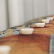 Wine barrels in a row…